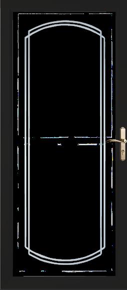 Decorative Glass Storm Doors